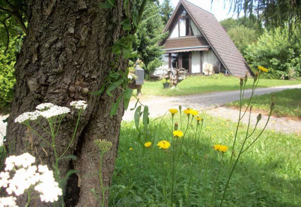 Vakantiepark Waldbrunn